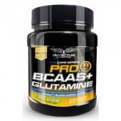 bcaas + glutamina invictus