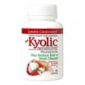 Kyolic 107 Colesterol